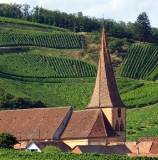 Alsace wine France