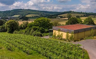 Ancre Hill winery Wales