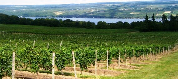 Finger Lakes wine region New York State