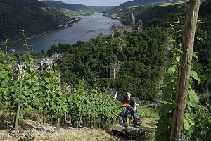 Escorted Wine Tour to Germany with Rose Murray Brown MW