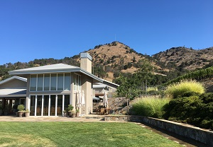 Shafer Vineyards Stags Leap District Napa Valley California