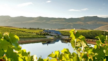 Creation Wine Estate