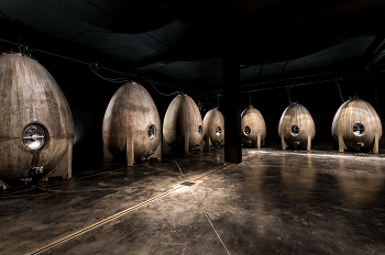 WINES MADE IN CONCRETE EGGS image
