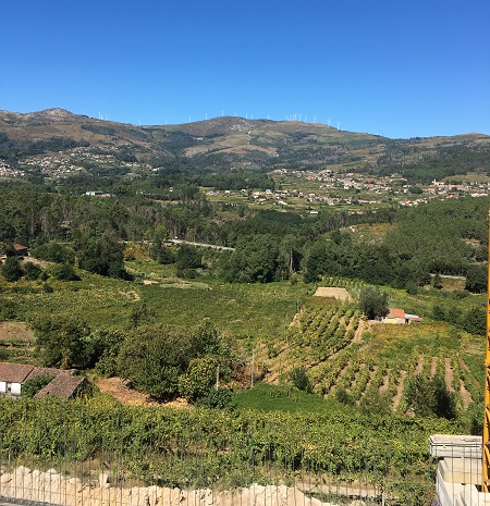 TWO FACES OF VINHO VERDE image
